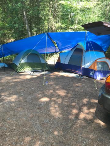 Camping in Sandbanks