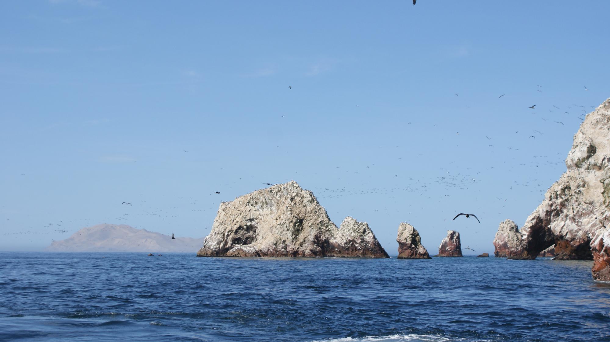 Peru Rocks and Birds